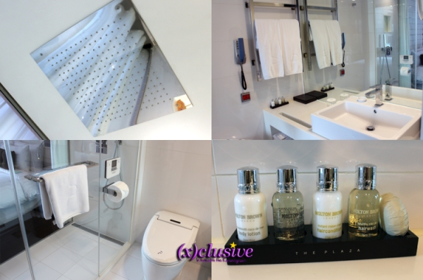 The Plaza - Bathroom Amenities